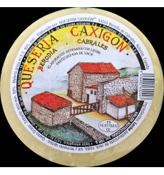 Cheese Caxigón