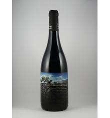 Garnacha Salvaje del Moncayo Wein