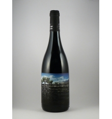 Vino Garnacha Salvaje del Moncayo