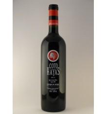 Vinho de Coto de Hayas Garnacha Syrah
