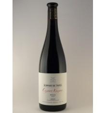 Domínio do vinho de Tares Cepas Viejas