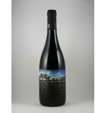 vino-garnacha-salvaje-del-moncayo_tastu.es