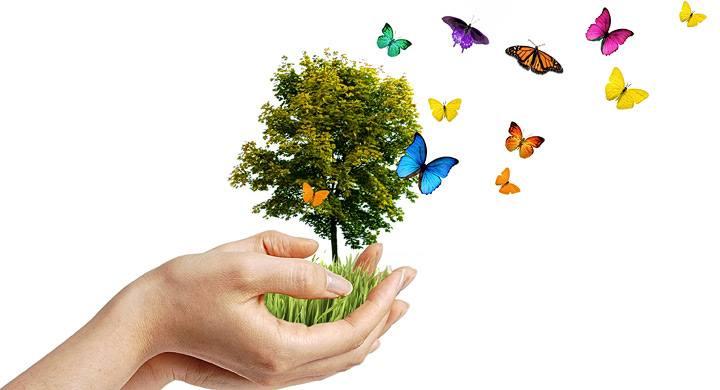 Dia Mundial Medio Ambiente_tastu.es